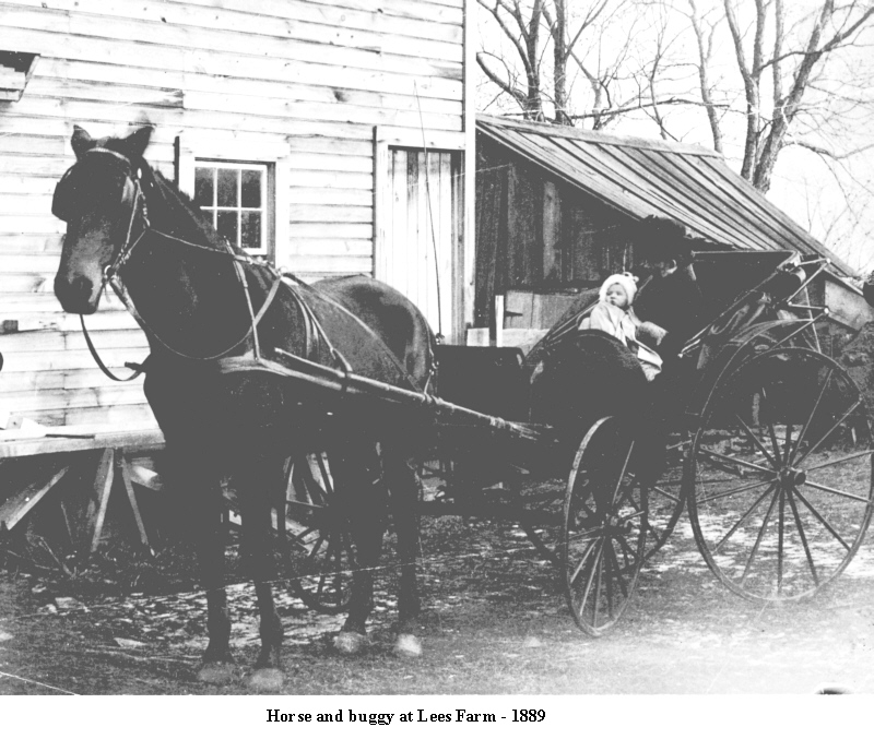 Horse and buggy at Lees Farm - 1889