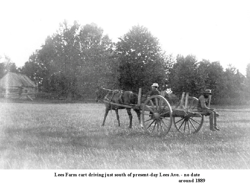 CA7905 Lees farm cart